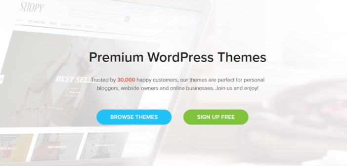 best place to buy wordpress theme